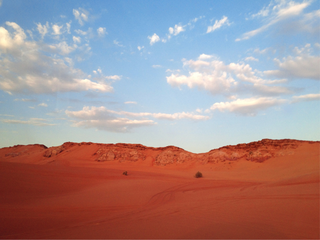 Desert Safari, Dubai, United Arab Emirates