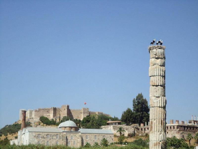Temple of Artemis, Selcuk, Turkey