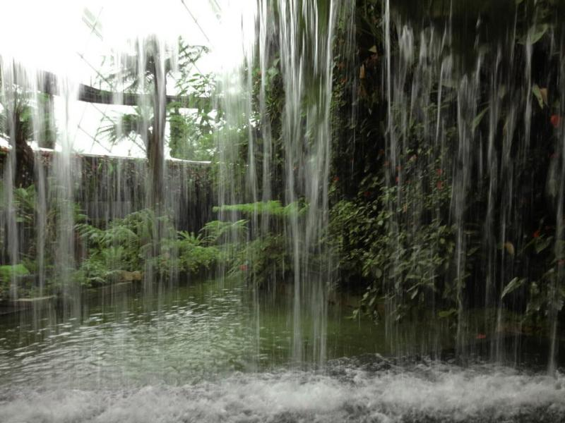 Artificial Waterfall in Cloud Forest of Gardens by the Bay Singapore