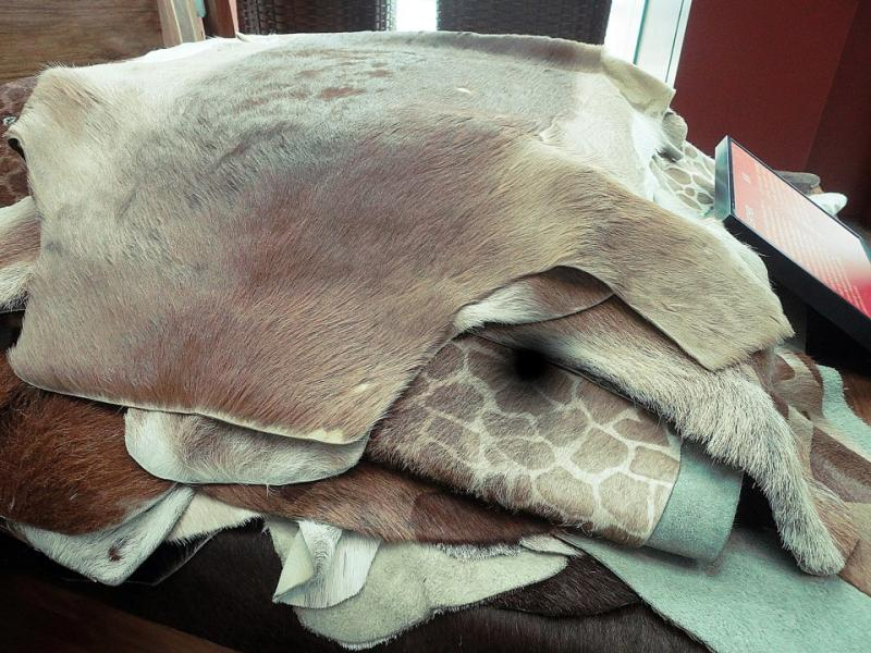 Kenya's Exotic Animal Skin at the Maritime Experiential Museum Sentosa