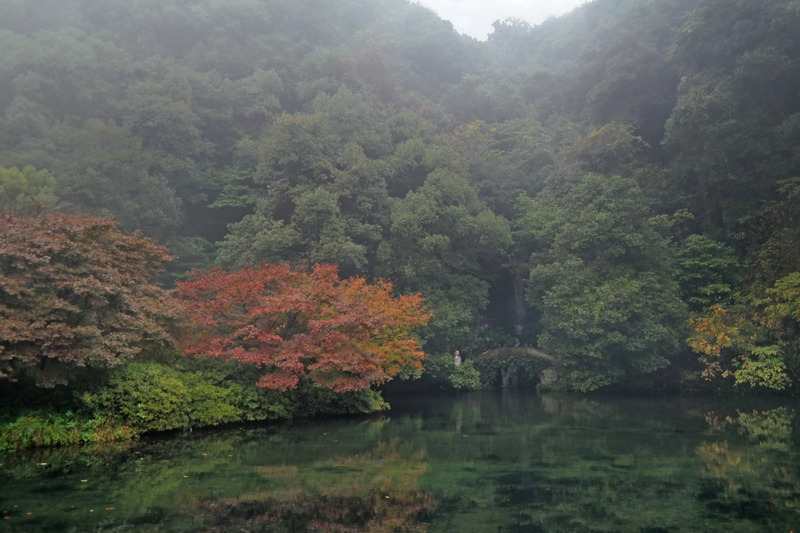 Nine Creeks Meandering Through a Misty Forest, Hangzhou, China