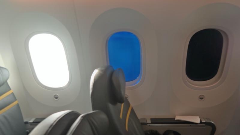 ScootBiz, 787 Dreamliner