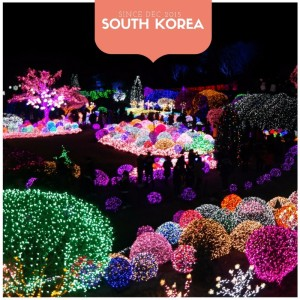 South Korea Travel Guide & Itineraries